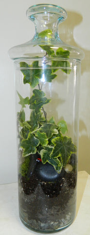 Tall Terrarium with Lid