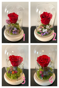 Forever Rose in Beauty Vase