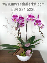 Load image into Gallery viewer, Orchids arrangement 1