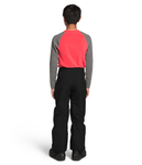 Freedom Insulated Pant Boys' - The North Face - Chateau Mountain Sports