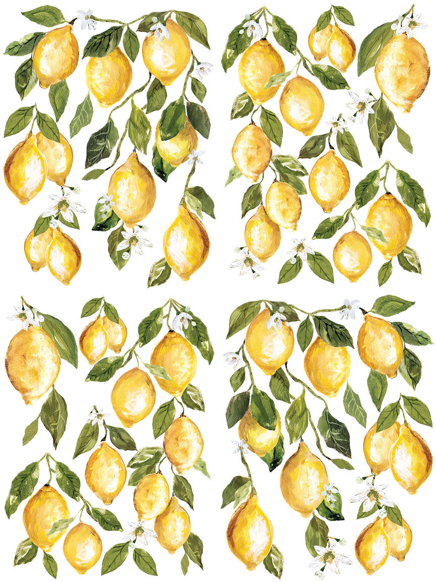 "12"" x 16"" Full color bound with 4 pages   The Lemon Drops decor transfers are the newest generation of Iron Orchid Designs decor transfer. The new book of transfer pages is unlike anything before! You will receive the book with twice as much area of rub on transfer art than our tubes.   The new style lets your creativity build layer upon layer of beautifully curated art.  Lemon Drops is a favorite. The new layout will give you more lemons per pack than previous versions It's an artist's dream."