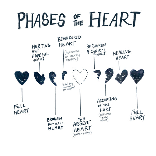 Phases of the Heart