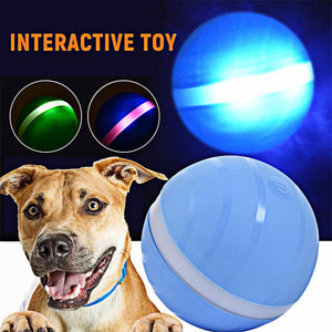 Automatic Dog Ball Toys Jumping Magic Ball Launcher Dog/Cat Outdoor Toys Waterproof USB Rubber LED Electric Pet Ball Kids Toys | nezzypuppers