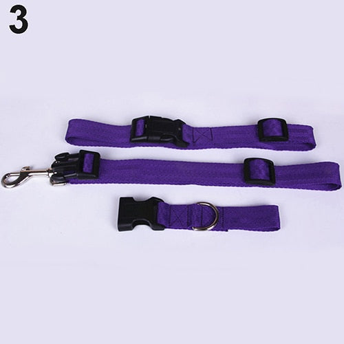 Pet Products Adjustable Cute Pet Dog Traction Rope Hands Free Running Walking Jogging Pet Dog Waist Leash Traction Nylon Rope | nezzypuppers