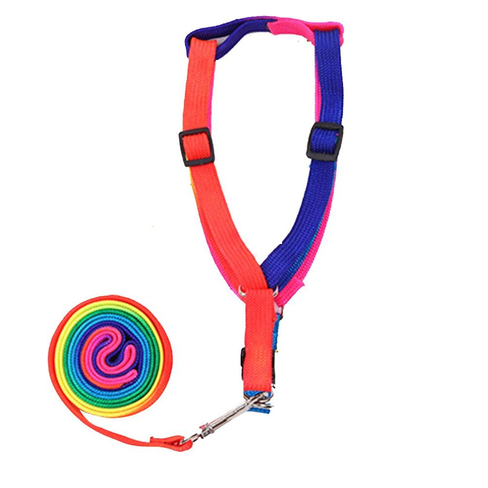 Colorful Rope Chest Strap Dog Leash With Chain Cute Rainbow Practical Pet Dog Traction Dog Rope | nezzypuppers