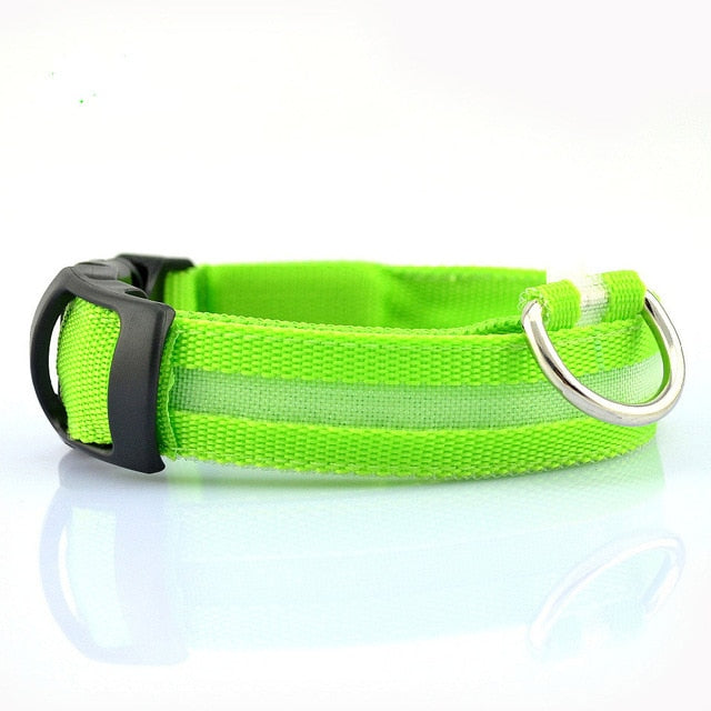 Nylon LED Pet dog Collar,Night Safety Flashing Glow In The Dark Dog Leash,Dogs Luminous Fluorescent Collars Pet Supplies | nezzypuppers