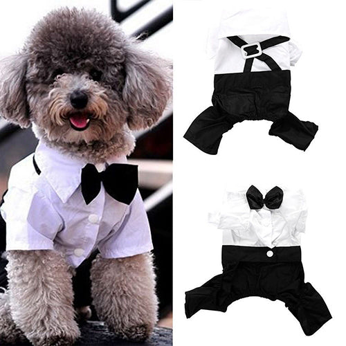 Hot! Pet Dog Cat Clothes Prince Tuxedo Bow Tie Suit Puppy Costume Jumpsuit Coat S-XXL 456fwr32