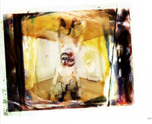 Load image into Gallery viewer, The Apocalyptic Nightmare Journey by M.Shawn Crahan