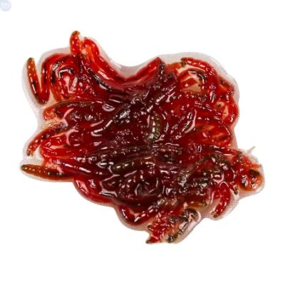 Frozen Bloodworm 1packet (5 slab)