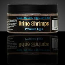 DISCUSFOOD Brine Shrimps Premium Eggs
