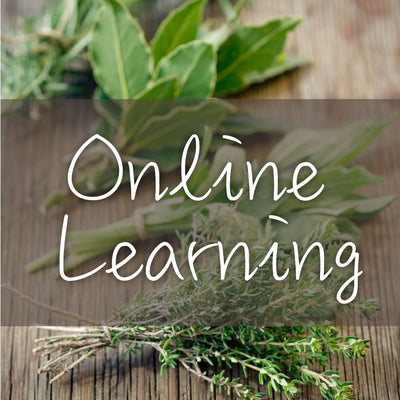 Online learning 900x900