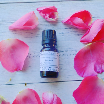 Rose Attar, Origin:India, Rosemary Garden 奧塔玫瑰