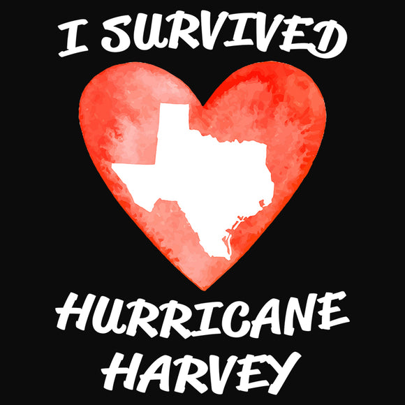 Heart Survived Hurricane Harvey - (DSN-11027)