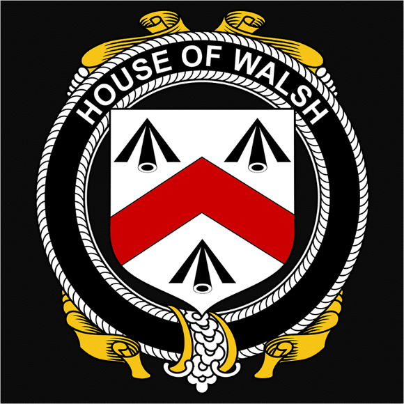 Irish House Heraldry Walsh - (DSN-15509)