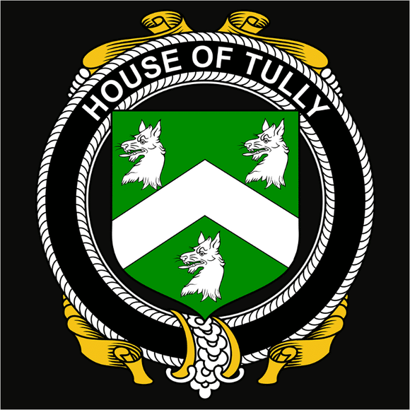 Irish House Heraldry Tully - (DSN-15507)