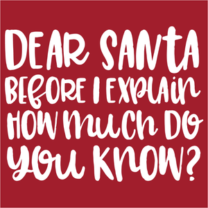 Dear Santa Before I Explain - (DSN-14930)