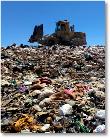 <p>Clay and crystal litters require many centuries to break down in landfills </p>