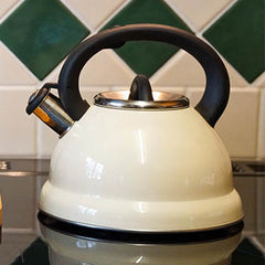 What Are the Different Types of Kettles?