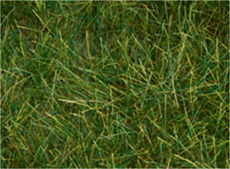 "Bachmann 31002 Pull-Apart 6mm Static Grass - Dark Green (one 11"" X 5.5"" sheet)"