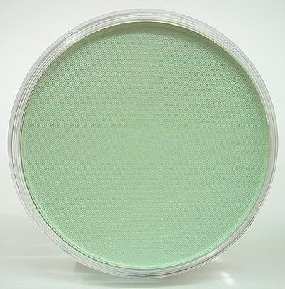 PanPastel Weathering Colors 26608 Chromium Oxide Green Tint 9ml pan