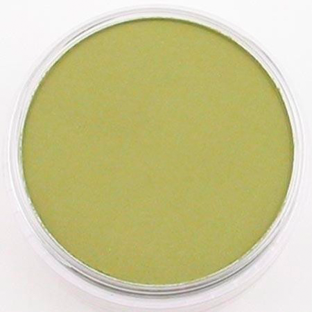 PanPastel Weathering Colors 26803 Brite Yellow Green Shade 9ml pan