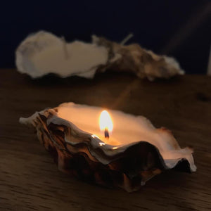 Handmade Cornish oyster candles 4pk