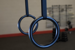 Body-Solid Tools GYM Rings