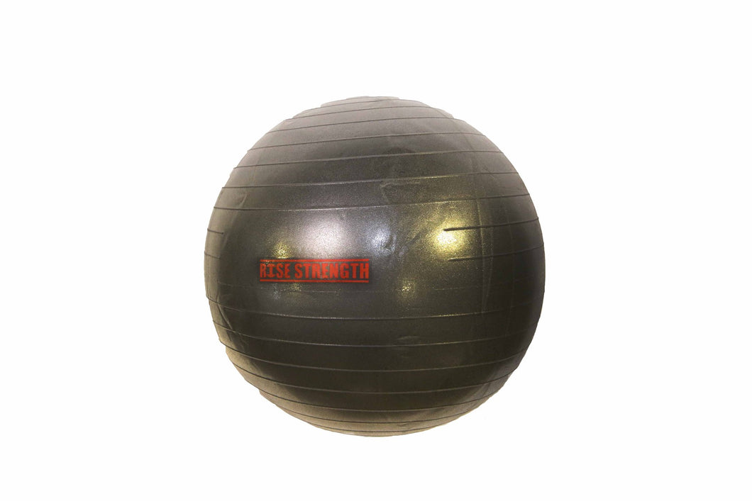 IDEA Anti-Burst Gym Ball 65cm