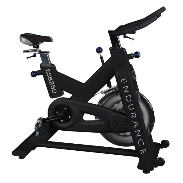 ( IN STOCK JUNE 10 ) ENDURANCE EXERCISE SPIN BIKE ESB250