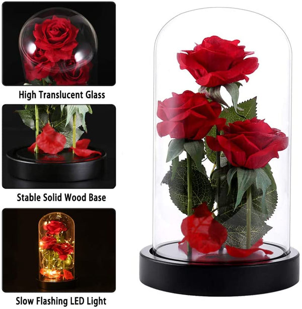 Beauty and The Beast Rose Flowers