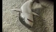 Load image into Gallery viewer, Surprised Baby Shark