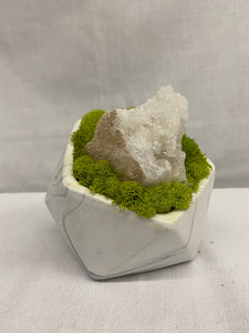 "5"" Moss and Crystals in Container"