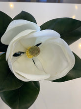Load image into Gallery viewer, Magnolia Stem