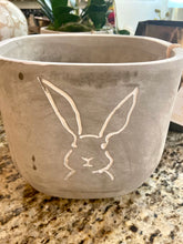 Load image into Gallery viewer, Peter Rabbit Pot 🐰