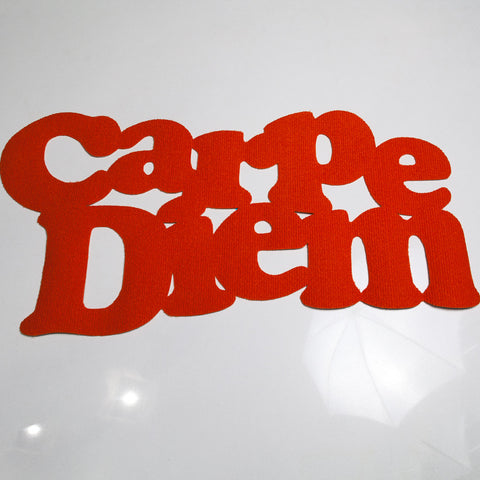 Carpe Diem Mat (other colors available)