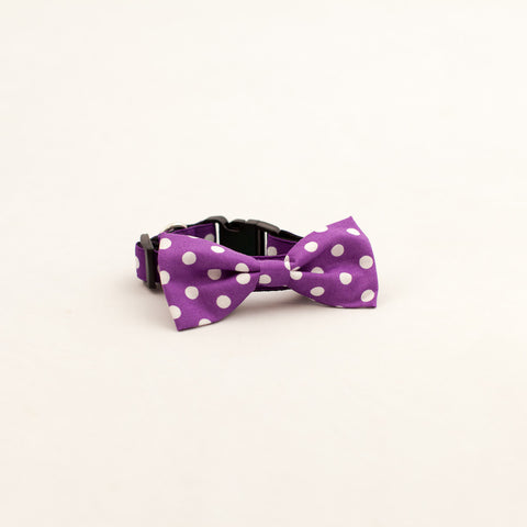 Dog Bow-Tie Collar (other colors available)