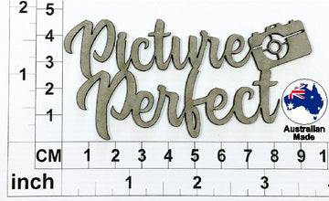 Picture Perfect Chipboard Title