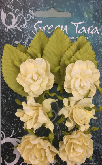 Tea Roses Flowers - Cream