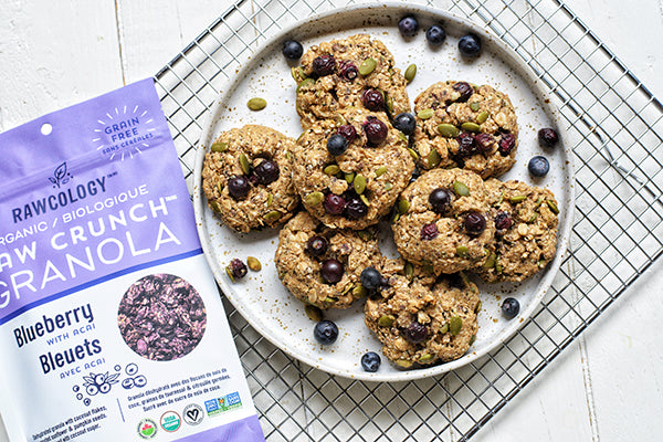 Rawcology Inc | Blueberry Breakfast Cookies