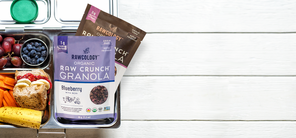 New Snack Pack Grain Free Granola Chocolate and Blueberry