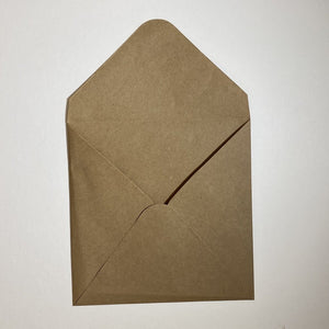 Brown V Flap Envelope   160