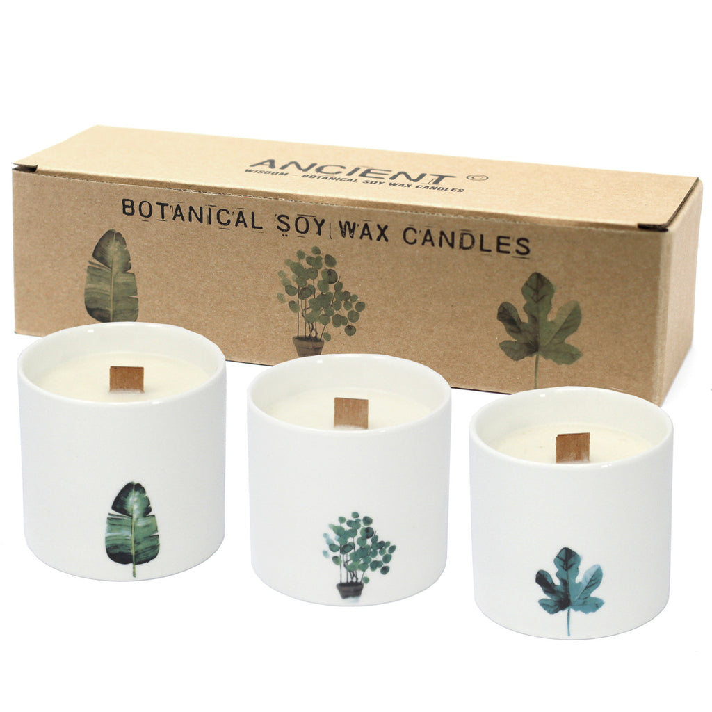 Pack of 3 Large Botanical Candles - Wild Jasmine
