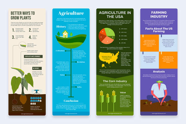 Agricultural Vertical Infographics