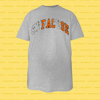 FALSE Shirt (Grey)