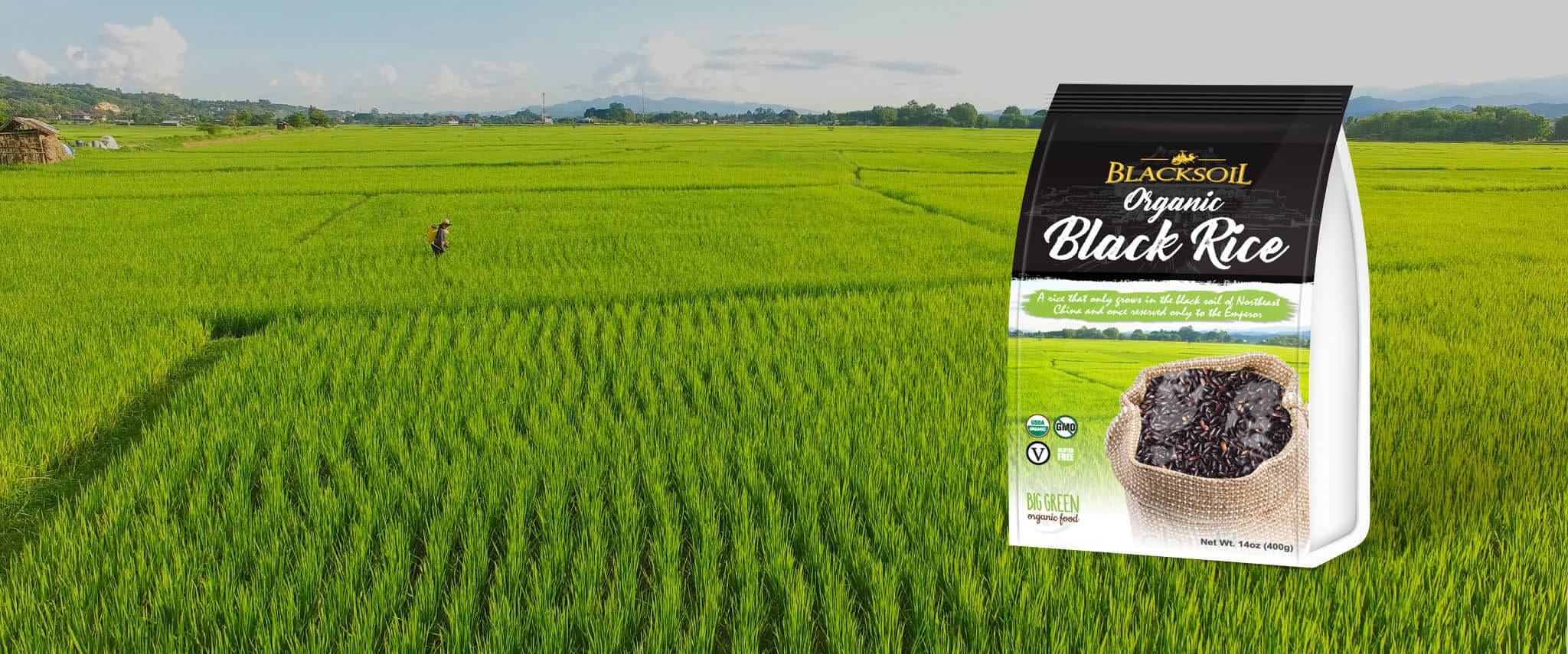 black-soil-black-rice