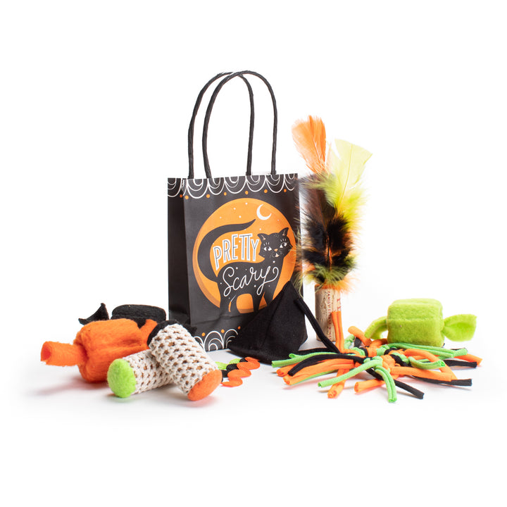 Spooky Halloween Cat Toy Goodie Bag </br> LIMITED EDITION • MADE IN THE USA