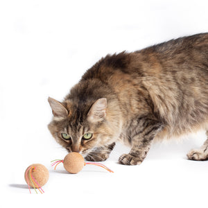 Cork Bombs :: Cork Cat Toys (Set of 2 Toys)