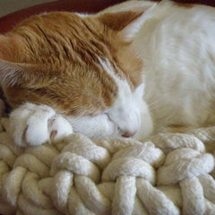 Cuna - Crocheted Cotton Cat Bed