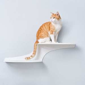 Cat Clouds Cat Shelf from The Refined Feline