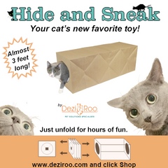Hide and Sneak Paper Bag Cat Tunnel from Dezi & Roo